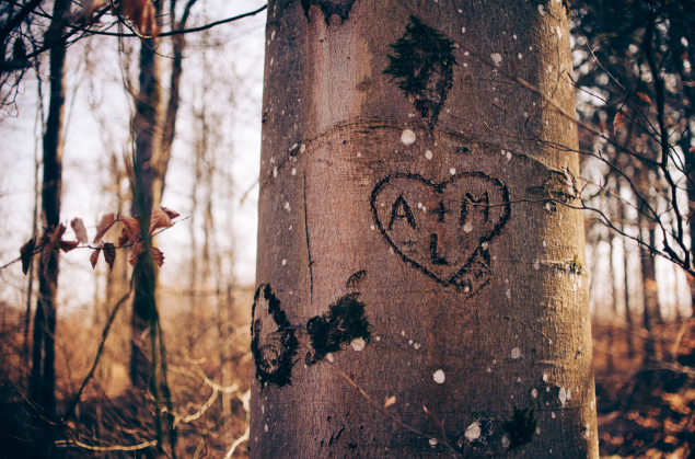 Initials on a Tree.PNG